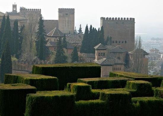 Alhambra Hedges, Granada, Spain